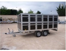 BW Trailers - 24 CHIENS